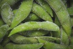 Macro del primo piano della soia verde Fotografia Stock Libera da Diritti