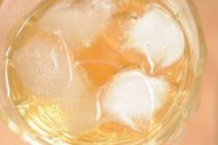 Macro del whisky fotos de archivo libres de regalías