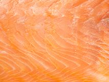 Macro of delicious salmon fillet Stock Images