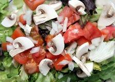 Macro dell'insalata Fotografie Stock Libere da Diritti