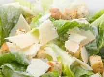 Macro dell'insalata di Caesar Immagini Stock