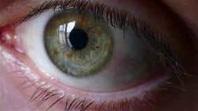 Macro dell'occhio umano - 4K stock footage
