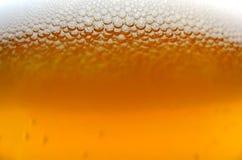 Macro della birra Fotografia Stock
