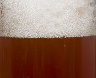 Macro della birra Immagine Stock