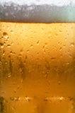 Macro della birra Fotografie Stock Libere da Diritti
