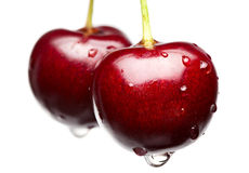 Macro della ciliegia rossa Fotografia Stock
