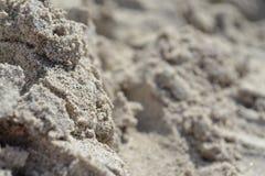 Macro della sabbia in Gran Canaria Immagine Stock