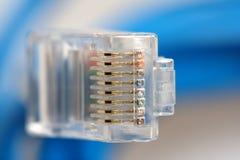 Macro della spina del collegamento di rete RJ45 Fotografie Stock Libere da Diritti