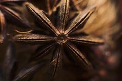 Macro della stella dell'anice Fondo e strutture dell'alimento Ingrediente aromatico Immagini Stock Libere da Diritti
