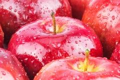 Macro delle mele bagnate rosse fresche Immagini Stock Libere da Diritti