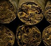 Macro des cigarettes ou du cigarillo sèches brunes comme concept de dépendance Photo stock