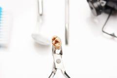 Macro des dents avec la cavité photographie stock libre de droits
