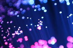 Macro detail of a fiber optic data transmission in the blue and blue-violet color. Detail of fiber optic red and blue Royalty Free Stock Photos
