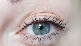 Female blue eyes. A macro detail of Iride stock images