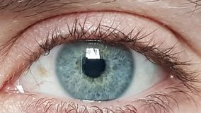 Male blue eyes. A macro detail of Iride royalty free stock images
