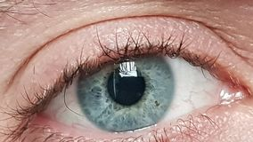 Male blue eyes. A macro detail of Iride royalty free stock photos
