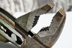 Macro detail of an old rusty pliers with its adjustable cogged head on the isolated background Stock Image