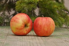 Red tasty apple Royalty Free Stock Images