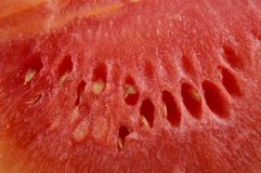 Macro detail of watermelon. Red pulp with seeds Stock Photography