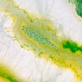 Macro di geode dell'agata Fotografie Stock