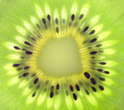 Macro di kiwi fresco Immagini Stock Libere da Diritti