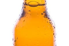 Macro di una birra fresca Immagini Stock Libere da Diritti