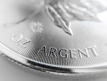 Macro Dichte omhooggaand van een van het de Esdoornblad van 999% Zilveren Canadees het Passementmuntstuk stock fotografie