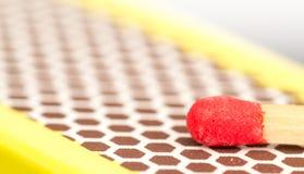Macro dichte omhooggaand van een rood gelijkehoofd stock fotografie