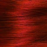 Macro do cabelo Fotografia de Stock