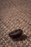Macro do feijão de café Fotografia de Stock Royalty Free