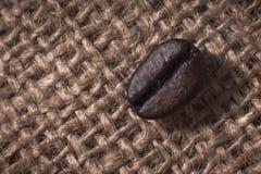 Macro do feijão de café Fotografia de Stock