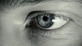 Macro do olho, homem novo video estoque