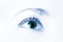 Macro do olho humano bonito fotografia de stock