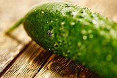 Macro do pepino Foto de Stock Royalty Free