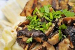 Macro do prato chinês Imagens de Stock Royalty Free
