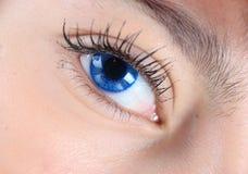 Macro dos olhos azuis imagem de stock royalty free