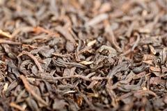 Macro of dried black tea Stock Images