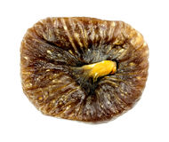 Macro of dried fig fruit Stock Images