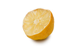 Macro of a dried lemon slice Royalty Free Stock Photo