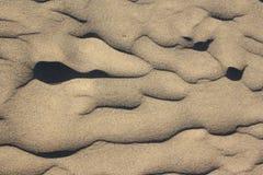 Macro dune or golden sand Stock Photos