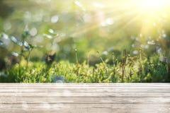 Macro ecologia verde rurale fotografia stock