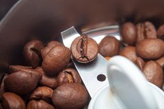 Macro electric grinder machine with coffee beans Royalty Free Stock Image
