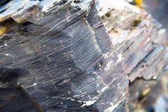 Macro Elementenrots, textuur van steen De bergen van de Kaukasus Stock Afbeeldingen