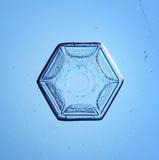 Macro en cristal blanc naturel de flocon de neige Photographie stock libre de droits