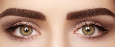 Macro en gros plan de bel oeil femelle avec les sourcils parfaits de forme Nettoyez la peau, maquillage de naturel de mode Bonne  Image stock