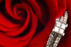 Macro Engagement Ring. A macro view of a diamond engagement ring, resting in a red rose Royalty Free Stock Images