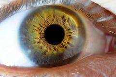 Macro extrema del primer en ojo masculino humano Foto de archivo libre de regalías