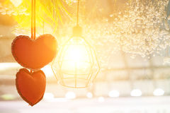Macro with extremely shallow DOF of Two Heart on Grass flower in paste. L and Soft style in Flare Light for Outdoor Background Stock Photo