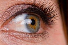 Macro Eye Royalty Free Stock Photo