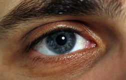 Macro of eye royalty free stock photos